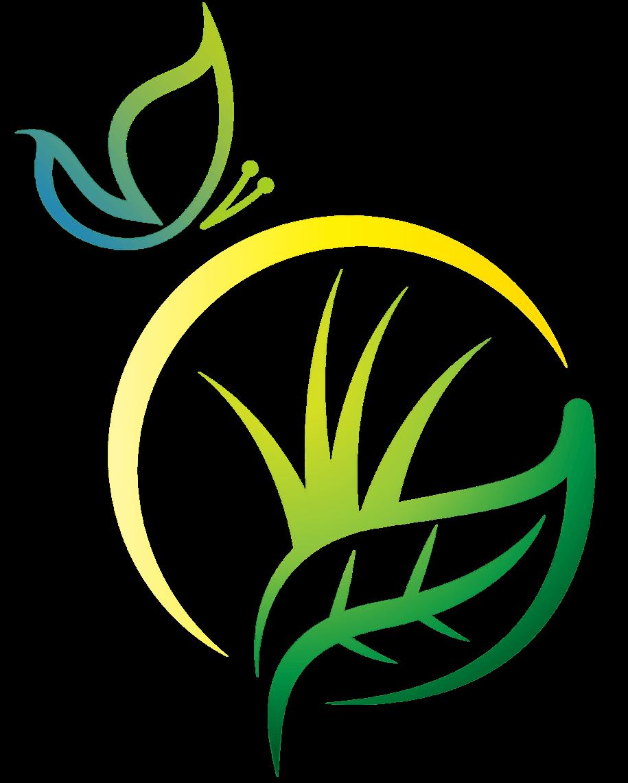 xce-new-symbol